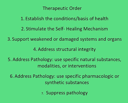 THerapeutic Order - Webpage - 11-3-2018