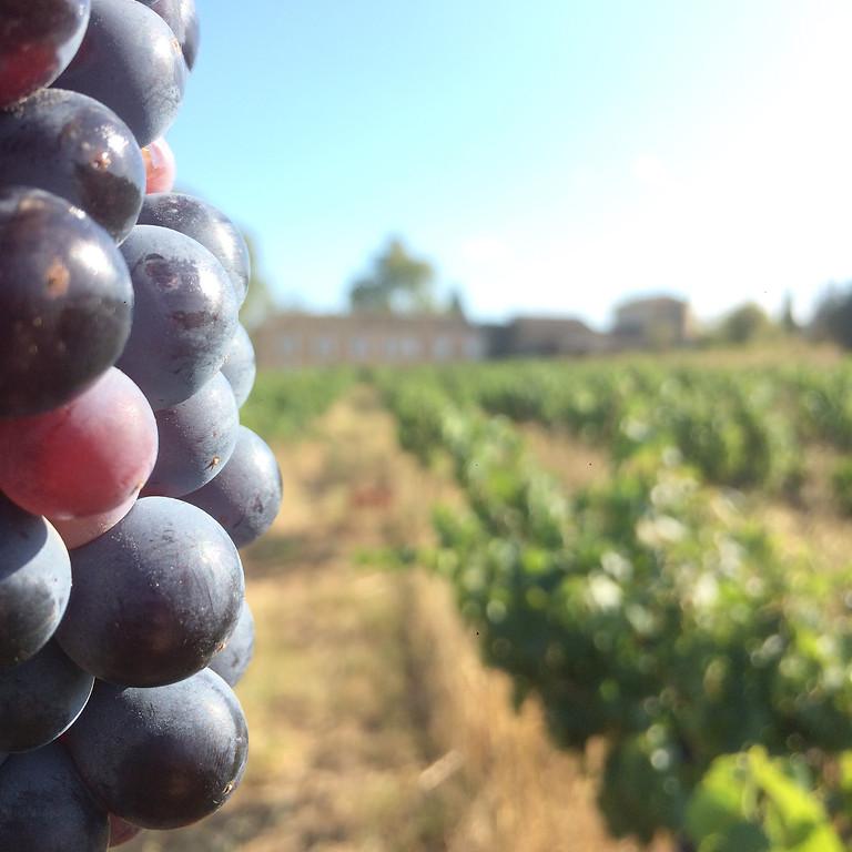 Salon des Vignerons Indépendants à Lyon Eurexpo