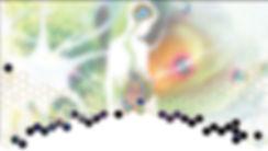 ECFdoc2teaser5.jpg
