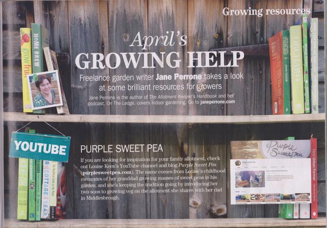 Purple Sweet Pea Update.