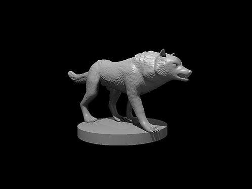 Lobo / Wolf 1