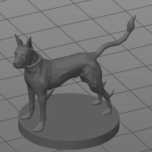 Cão Teleportador / Blink Dog
