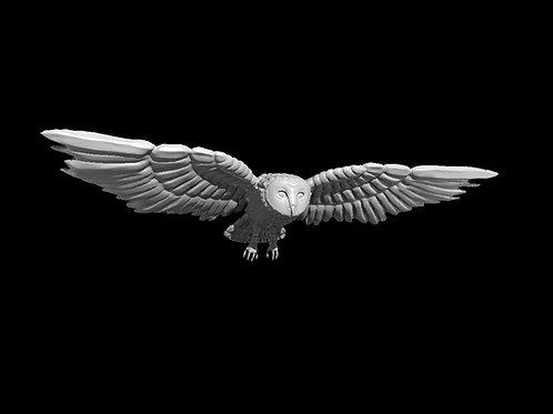 Coruja / Owl