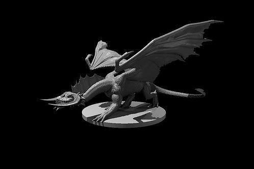 Dragão Negro Jovem 2