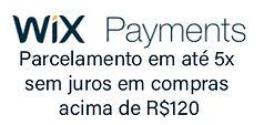 wix payment.jpg