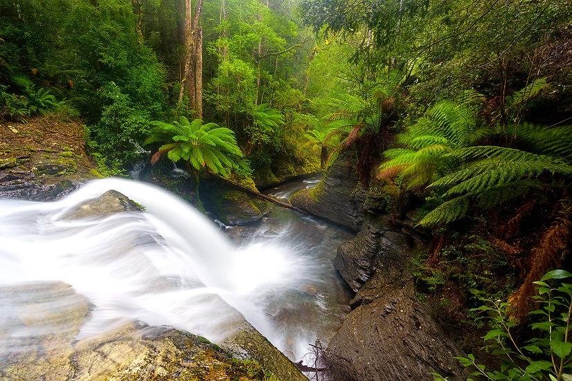 The Spout, Tasmania