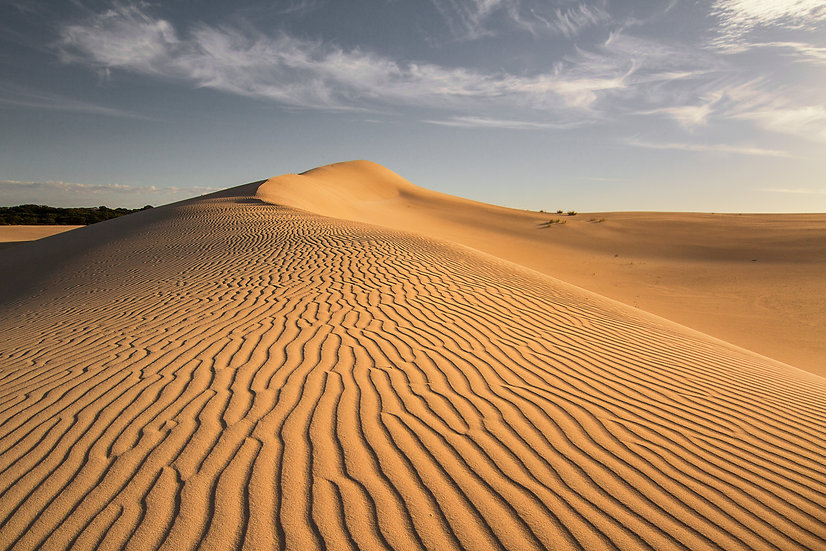 Little Sahara - Kangaroo Island