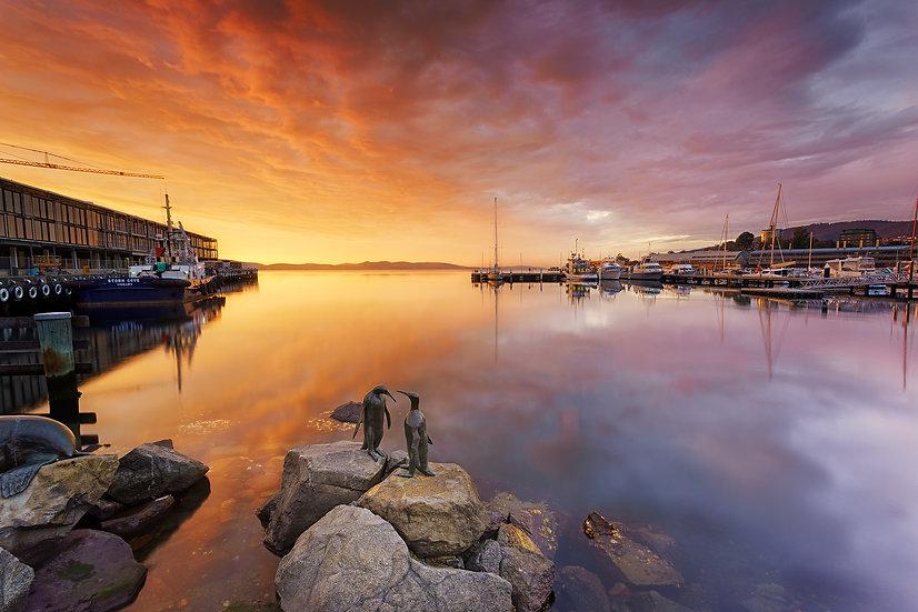 Sunrise at Constitution Dock