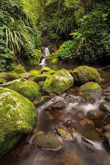 Waterfall, Lamington National Park, QLD