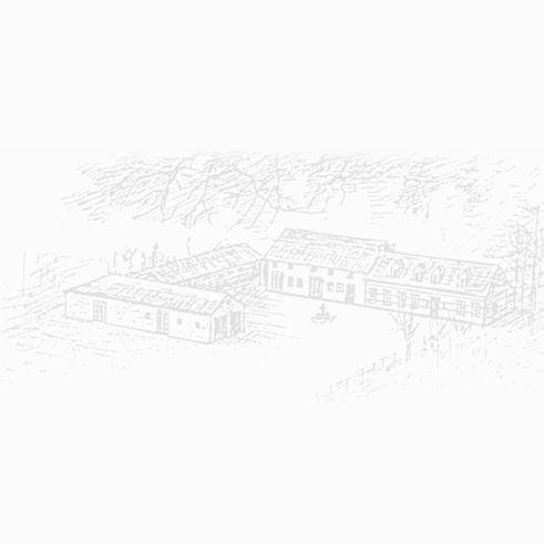 pachtgoedhof-website.jpg