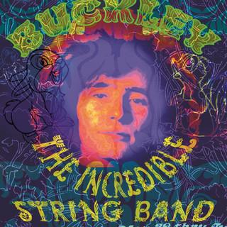 Panter Hippiebilly Poster