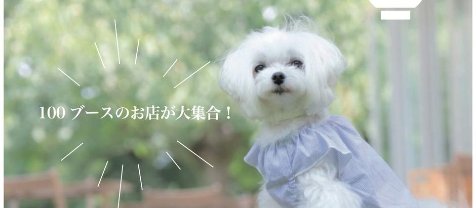 【告知】次回の犬祭について