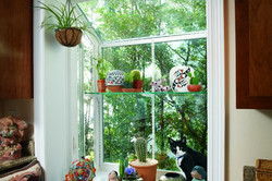 Simonton_Garden_plants-600x400