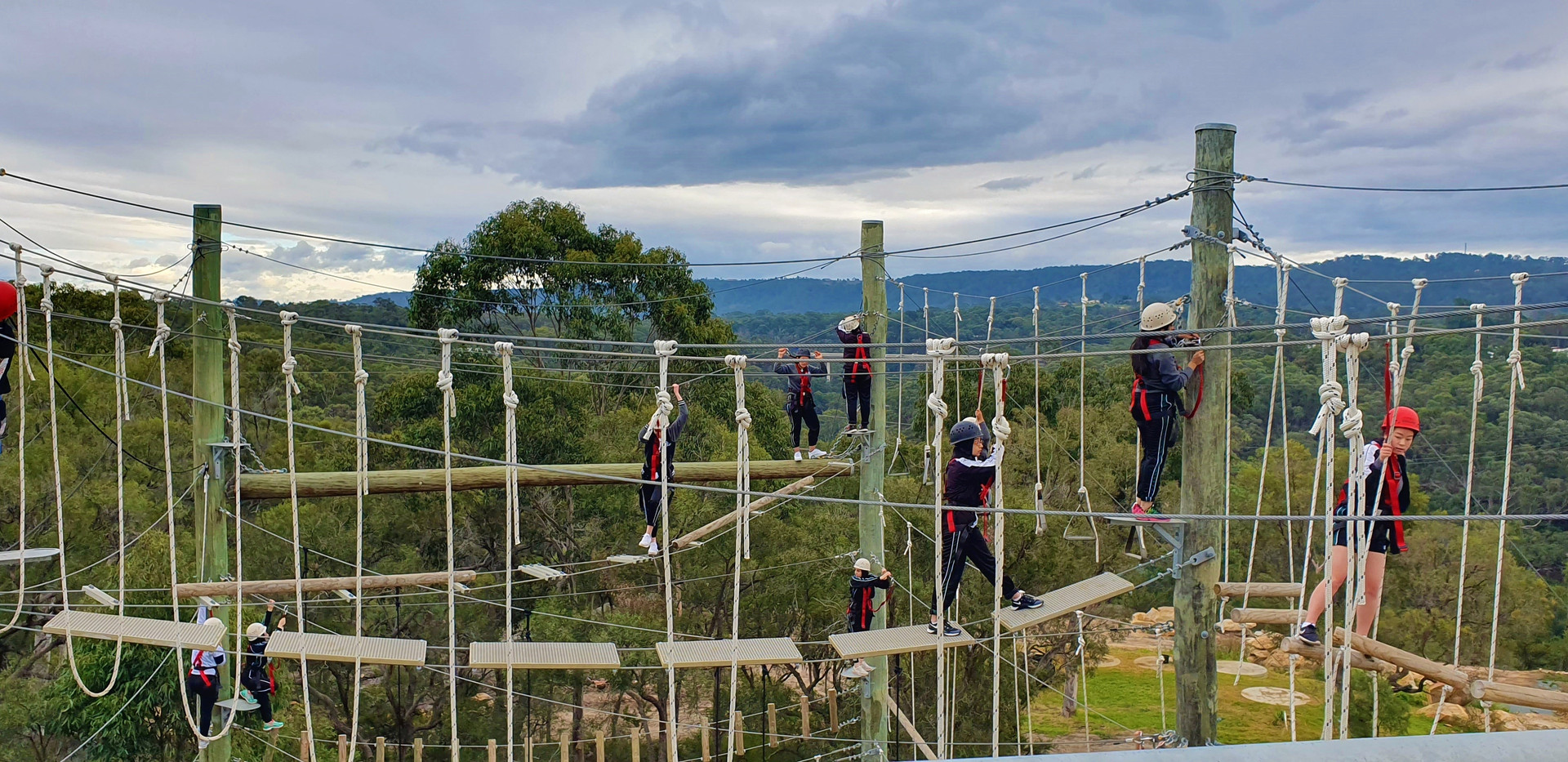 high ropes course south sydney bush camp