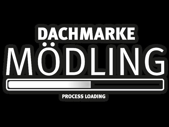 DachmarkeMoedling_ProcessLoading_PHASE_2