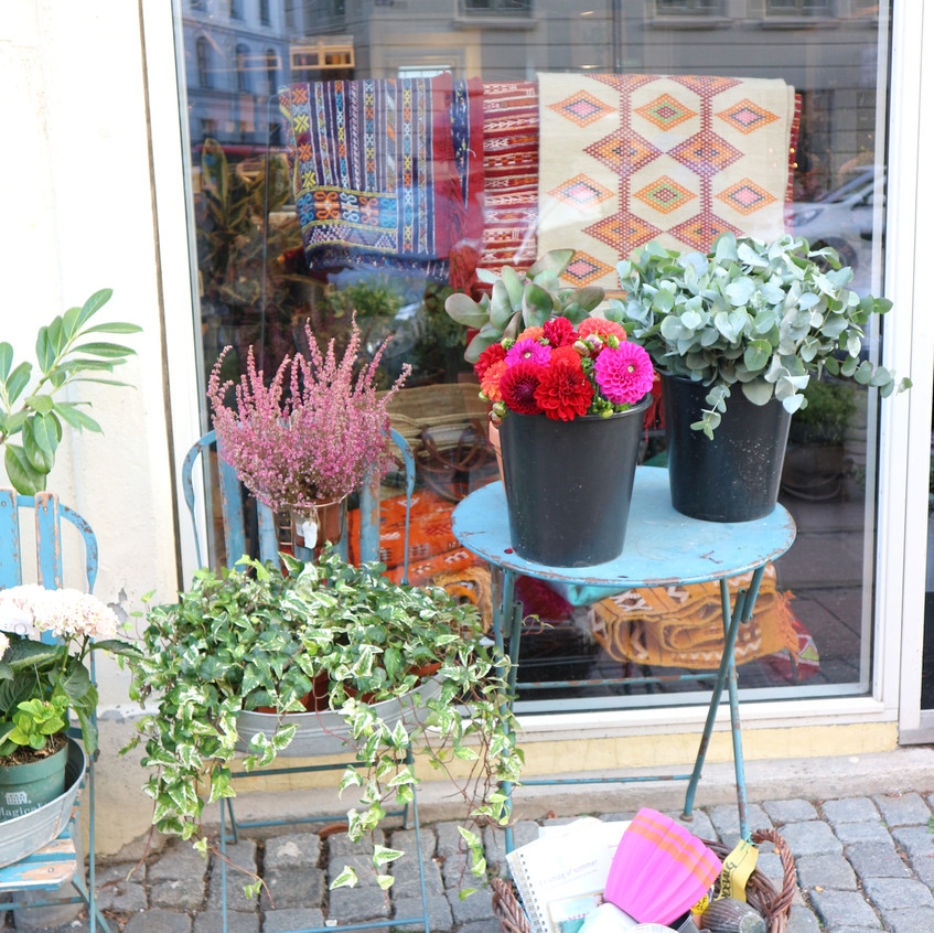 Cool and Cozy  flower shop