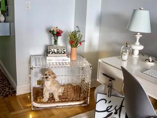 Ginger's Cozy Cabin