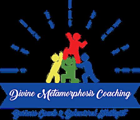 DMC Logo smaller version.png