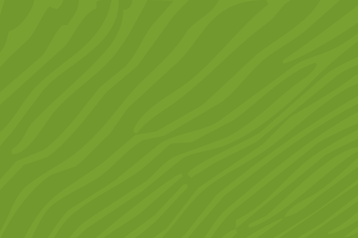 web_background_green.png