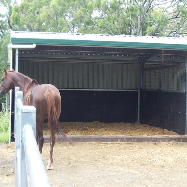 Outdoor Stable Complex