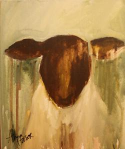 Lamb  ©Anna Hooser