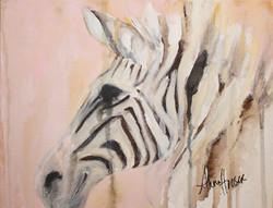 Zebra  ©Anna Hooser