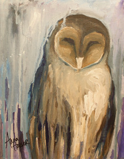 Barn owl  ©Anna Hooser
