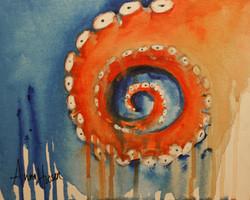 Octopus  ©Anna Hooser