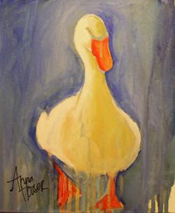 Duck  ©Anna Hooser