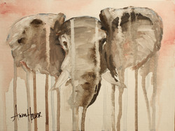 Elephant  ©Anna Hooser