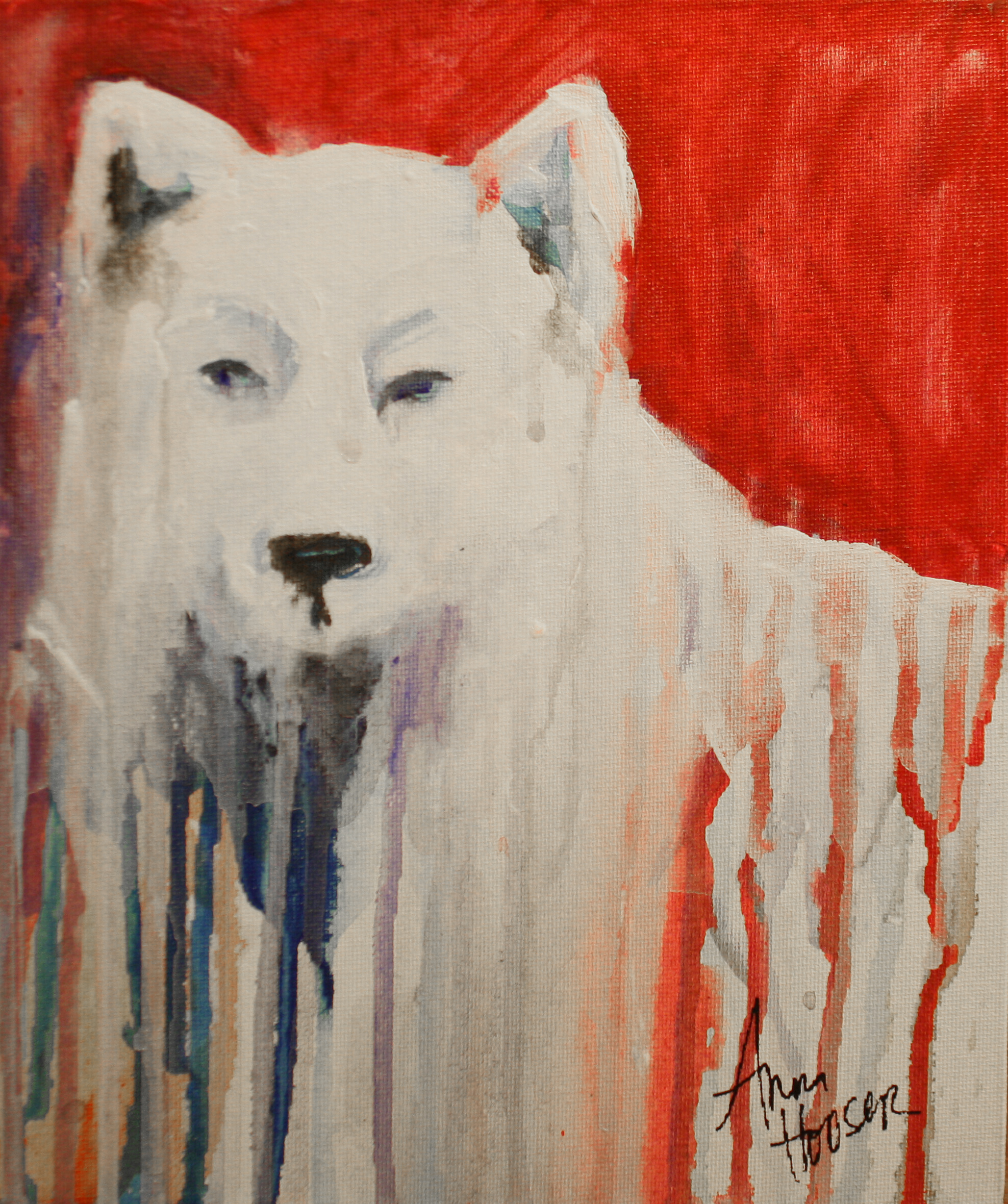Wolf  ©Anna Hooser