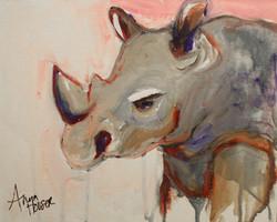 Rhino ©Anna Hooser
