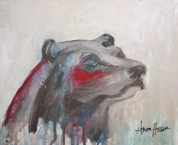 Bear Blushing  ©Anna Hooser