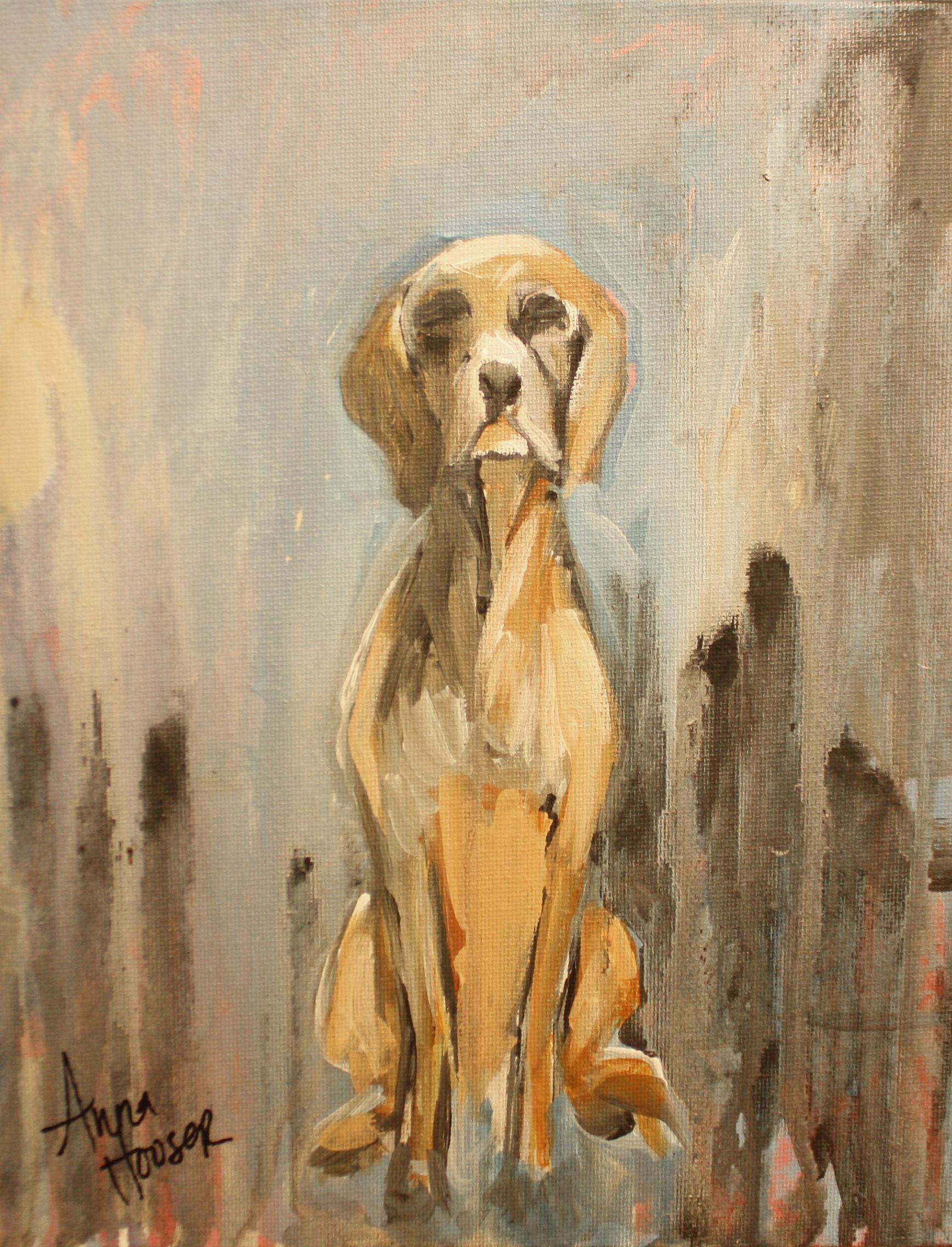 Hound Dog ©Anna Hooser