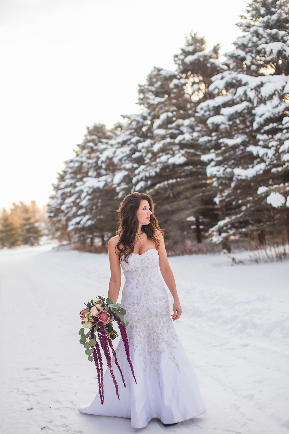 a winter wedding and elopement in Wisconsin