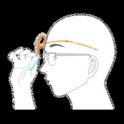 メガネ模式図i