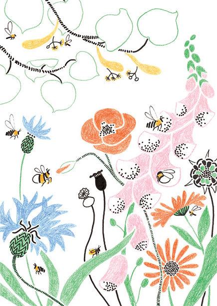 bijenplanten_445pixelsbreed.jpg