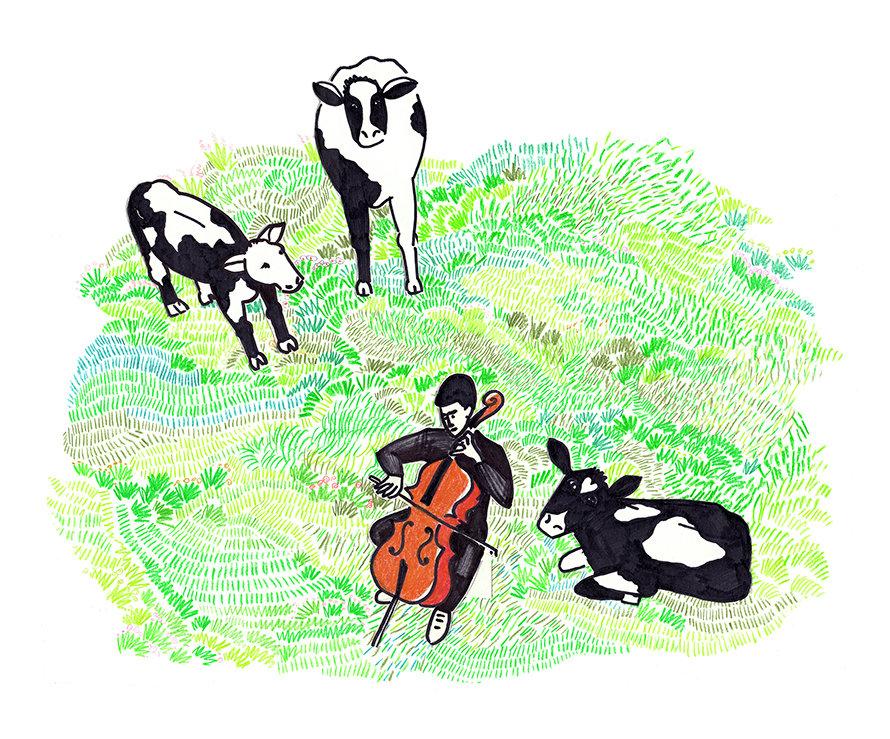 cellist in de wei_b2_890.jpg