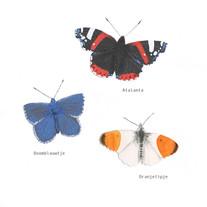 vlinders_890pixelsbreed.jpg