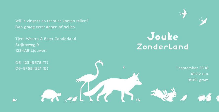 geboortekaartje ontwerp, gevouwen geboortekaartje, geboortekaartje met dieren