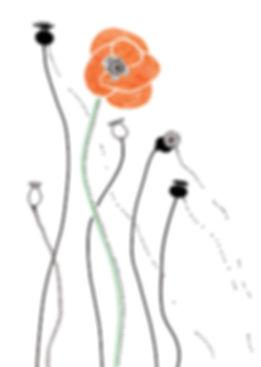 zaden oogsten klaproos_b2_445pixels bree