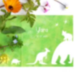 P1070070_b_1200px voor website.jpg
