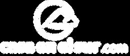 Logo casaenelsur blanco.png