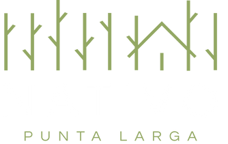 Logo Nativo claro.png