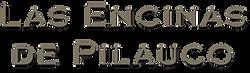 Logo Encinas color.png