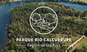 Logo Calcurrupe.jpg