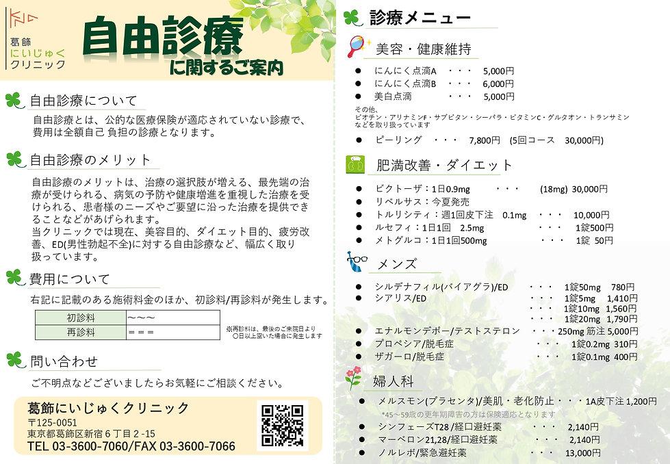 自由診療のご案内 (3)_page-0001.jpg