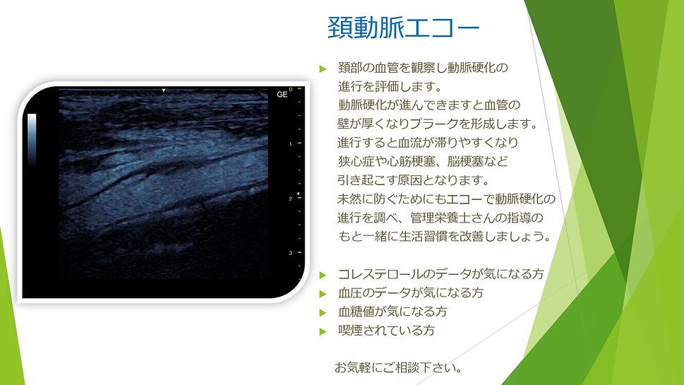 エコー_page-0003.jpg