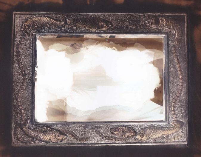 Carp Mirror