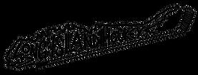 PNG horizontal LIHC logo.png